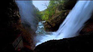 景勝地 信州高山村の雷滝・4K撮影