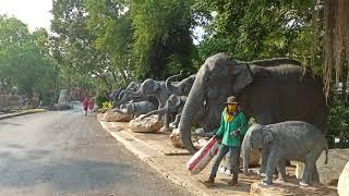 Парк Нонг нуч 12 Таиланд Паттайя
