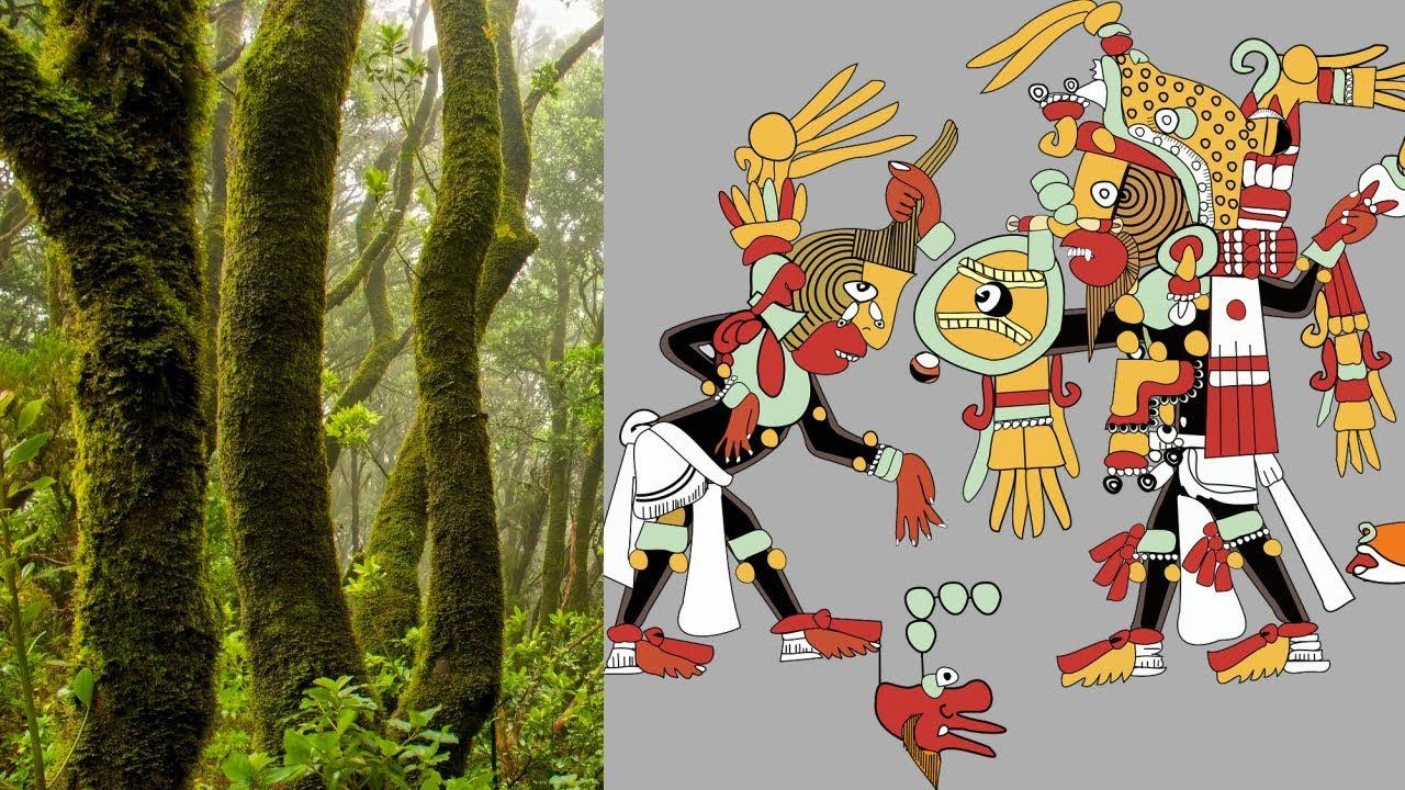 Die Maya-Legende Der Chechen Und Chacá Bäume