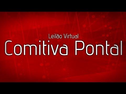 Lote 48   Blindado Pontal VR   234