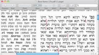 Bava Kama 17a-17b lesson 3