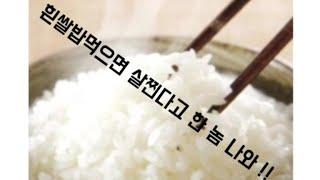 다이어트 할 때 맛없는 현미밥,고구마 안먹어도 됩니다.…