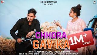 मै हूं छोरा गांव का  || Deshi Chhora Ganv ka  || New Dj Song 2020 || New Song