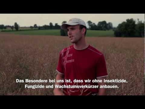 Migros Interview: TerraSuisse Rapsanbau