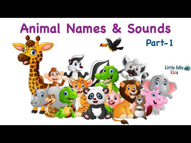 Learn Animal Names with Spellings & Sounds for Kids || Part - 1 || A to M || Animal Names for kids