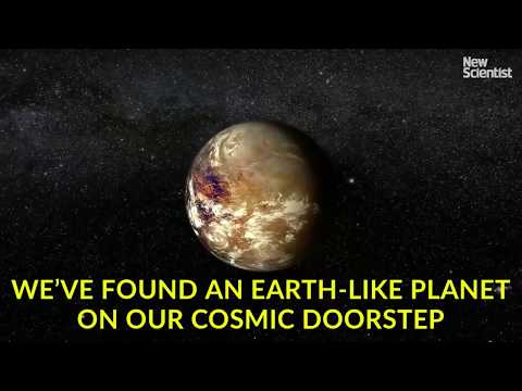 Proxima b: an Earth-like planet on our cosmic doorstep