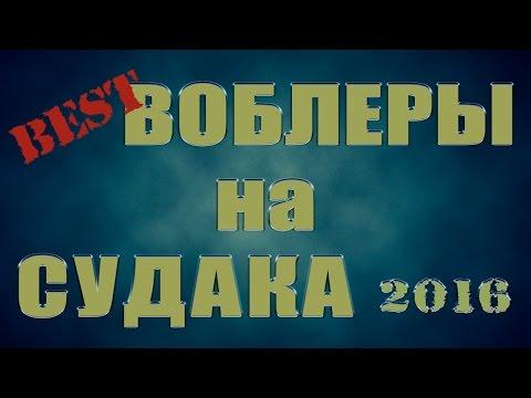 ЛУЧШИЕ ВОБЛЕРЫ НА СУДАКА 2016!!