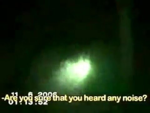 Туристы засняли Чернобыльского мутанта в зоне отчуждения
