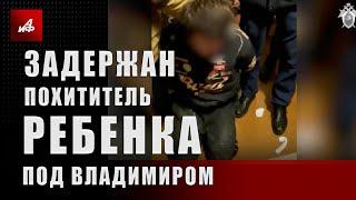 Задержан похититель ребёнка под Владимиром