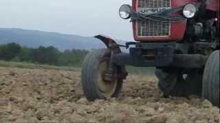 Jesienny siew czyli pszenica ozima 2012