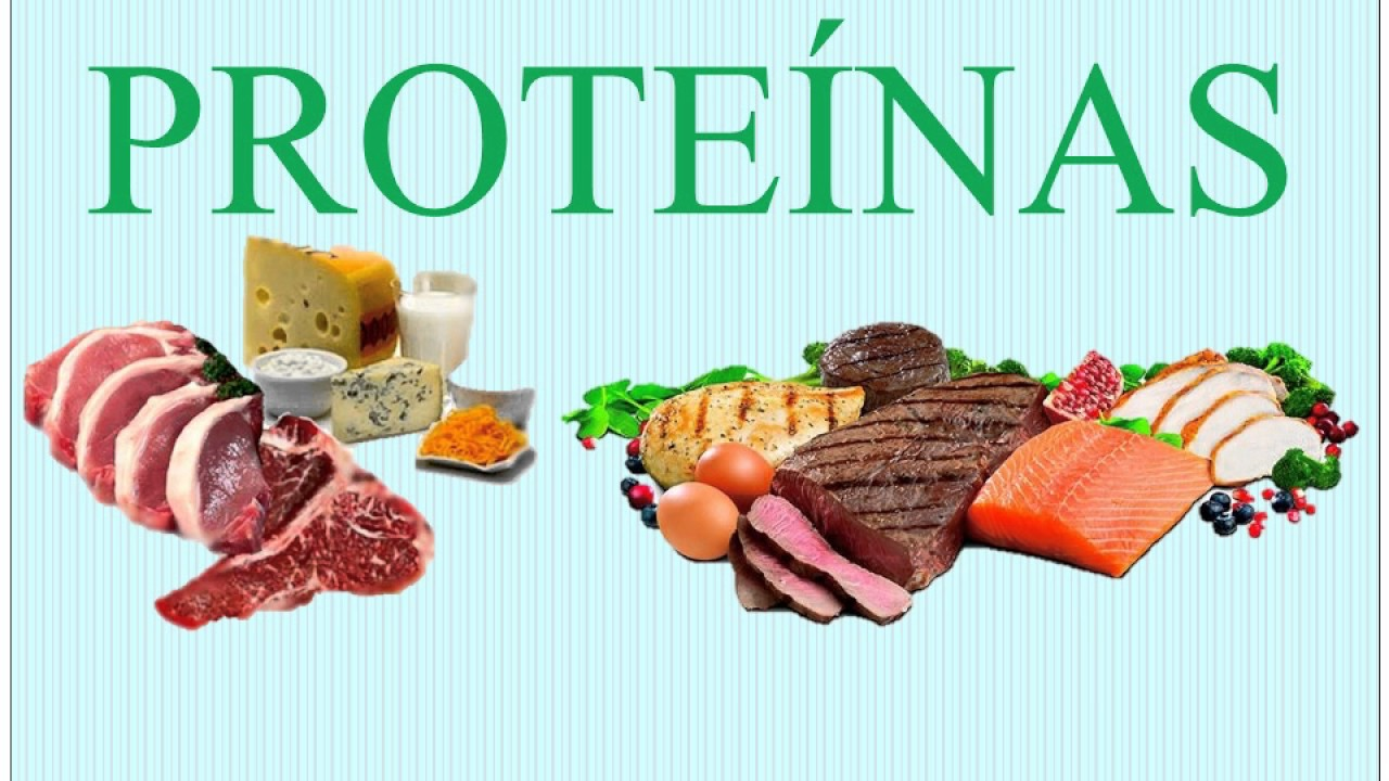 Biomoleculas Organicas (carbohidratos, Lipidos, Proteinas
