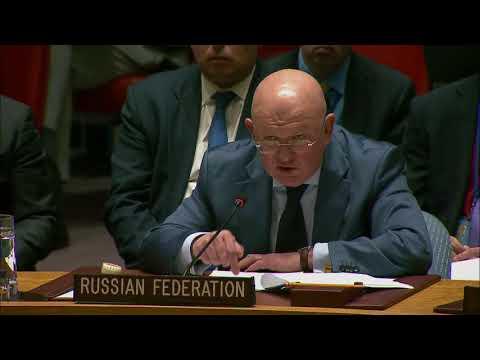 Выступление В.А.Небензи на заседании СБ ООН по гуманитарной ситуации в Сирии