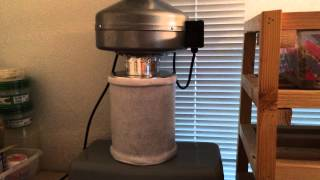 Just a quick vid on a small carbon filter set up for your snake and...