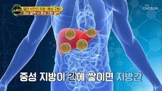 어혈→혈관 비만 부르는 주범! 중성지방 [스위치] 5회…