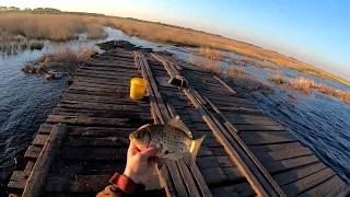 Рыбалка КАСТИНГОВОЙ сетью на рассвете