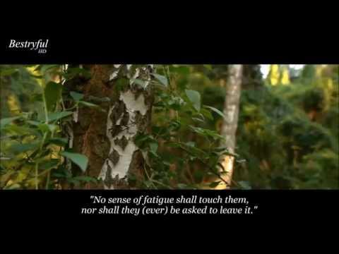 Surah Al Hijr  Hazza Al Balushi: Soothing Recitation   سورة الحجر   هزاع البلوشي