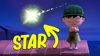 I Saw A CRAZY METEOR SHOWER in Animal Crossing New Horizons