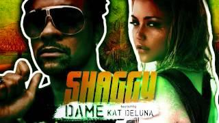 Shaggy feat  Kat Deluna -  Dame (Extended Mix)