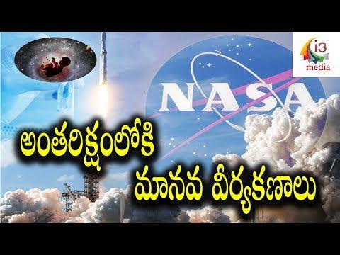NASA Human Sperm into Space | I3 Media