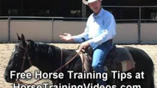 Horse Training using the German Martingale, part 1