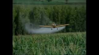 RIC Rural aborda o uso de fungicida no milho segunda safra