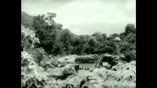 Roja Malare Rajakumari remix
