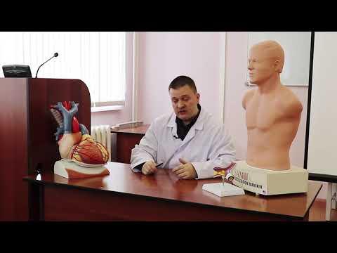 Инфаркт миокарда-  симптомы, алгоритм поведения.