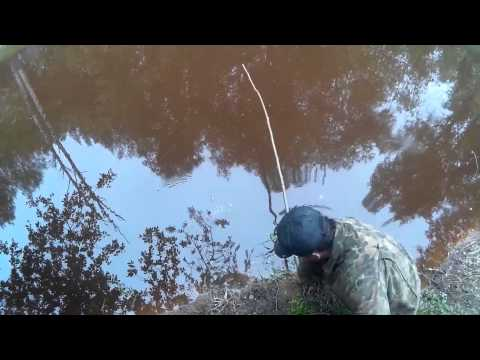 ютуб ловля на жерлицы летом