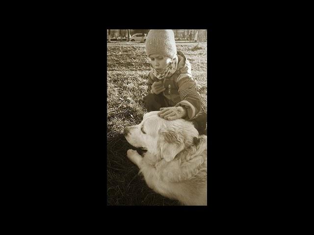 Изображение предпросмотра прочтения – ВероникаДемичева читает отрывок изпроизведения «Собаке Качалова» С.А.Есенина