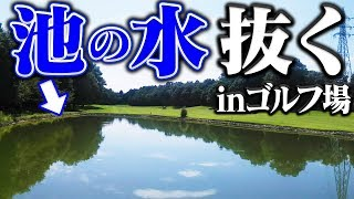ゴルフ場の池の水抜いたらボール以外に「アレ」が出てきた!?【なみき】【高橋としみ】