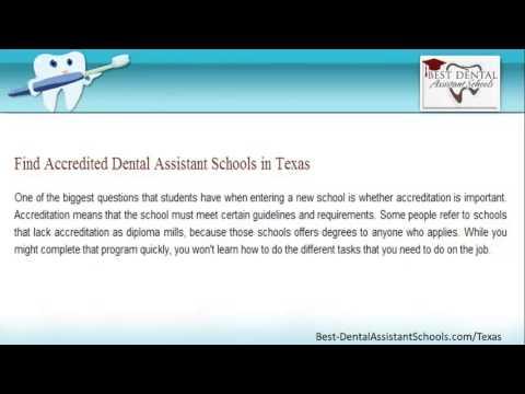 Top Dental Hygienist Schools in Texas | TX Dental Assistant Programs