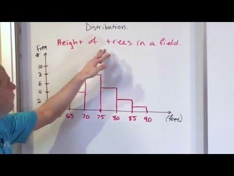 Lesson 8 - What is a Histogram in Statistics?