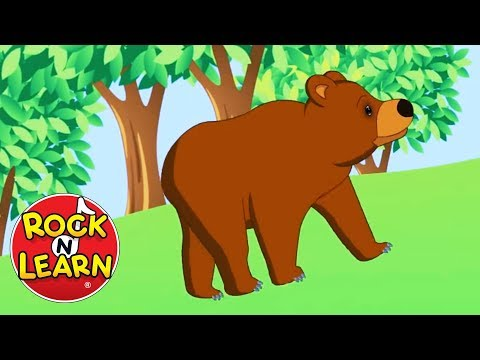 The Bear Went Over the Mountain | Songs for Kids