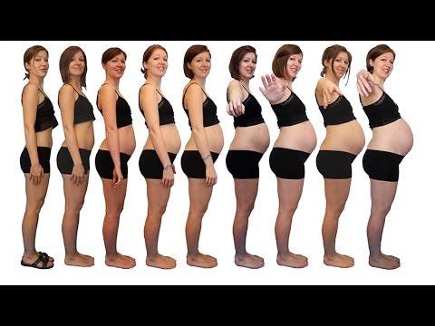 Gravidanza Evoluzione Pancione Morphing Youtube