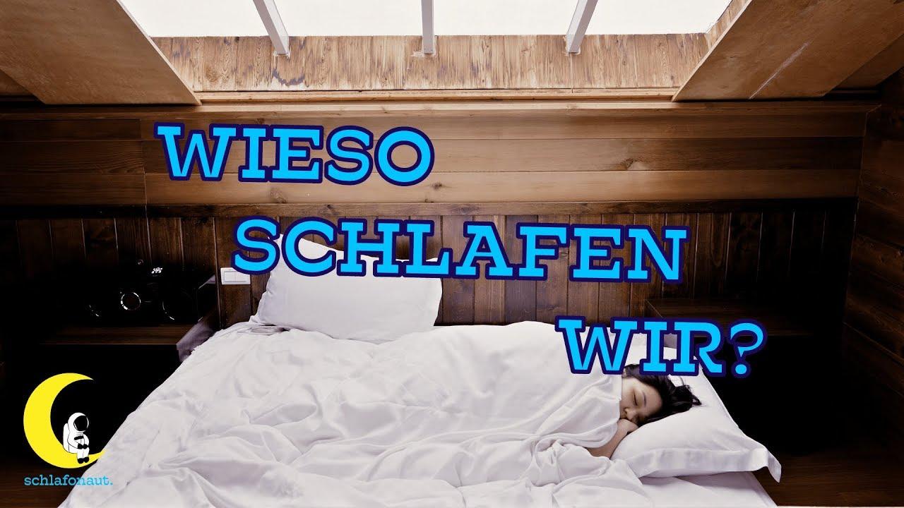 Warum Müssen Wir Schlafen
