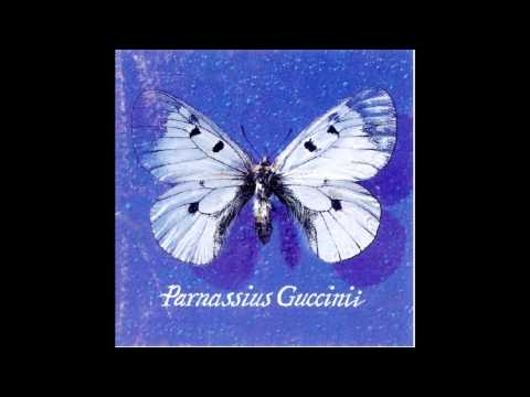 Francesco Guccini - Acque