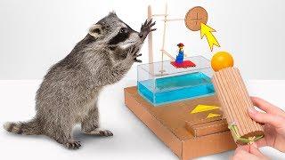 段ボール製のダンクタンク・ゲーム? 面白いからみんなも作ってみて!