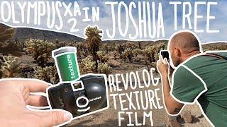 Joshua Tree National Park - Olympus XA2 - Revolog Texture Film