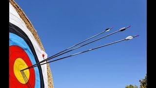 Video dimostrativo Tiro con l'arco Michele D'Amico - Freccia di Fuoco