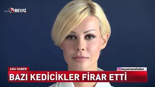 Eski kedicik Ceylan Özgül'den Adnan Oktar hakkında flaş iddialar