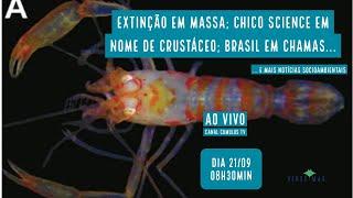 Extinção em massa no Planeta; Chico Science homenageado em nome de crustáceo e mais - VERDE MAR #69