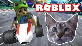 CHESTER THE CAT PLAYING MEEPCITY RACING FROM ROBLOX