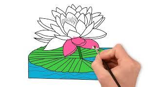 Vẽ Hoa Sen - How To Draw Lotus Flower - Tranh Tô Màu Các Loài Hoa