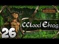 ambush retribution total war warhammer   wood elves campaign 26