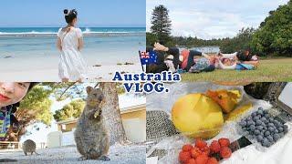 [??] 1시간 가득 채운⏳ 소중한 11일간의 호주 여…