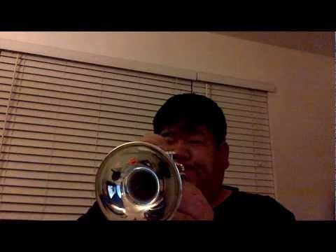 Bach-Artisan Piccolo Trumpet 4 (Vivaldi