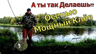 Рыболовная Насадка 2022 г НАЧНИ ЛОВИТЬ УЖЕ СЕЙЧАС НАСАДКА ДЛЯ КАРАСЯ ЛЕЩА КАРПА Клюёт вся рыба
