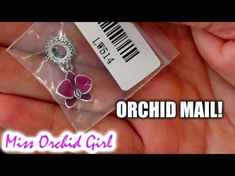 Orchid mail! - Letters and cards from you!