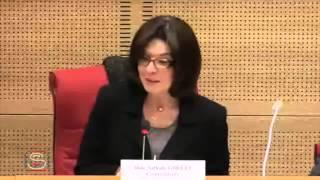 Commission enquête réseaux djihadistes - Introduction par la présidente Nathalie Goulet
