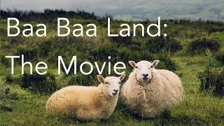 Baa Baa Land | The Movie | 8-Hour Slow-Motion Film